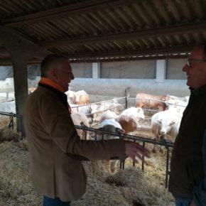 """Jean Castel (Cs): """"Calen polítiques d'incentiu a la ramaderia, que s'ha vist castigada amb el canvi de cadastral de les granges"""""""